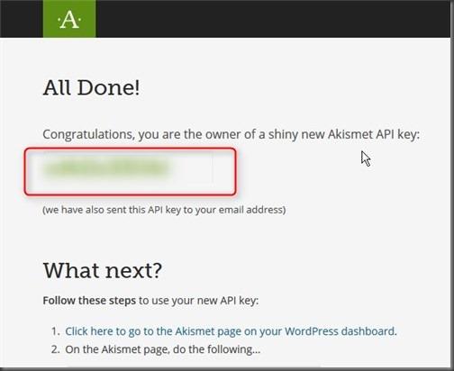 APIキーが発行されます